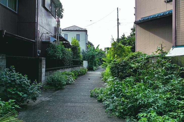 160903中仙川-9.jpg