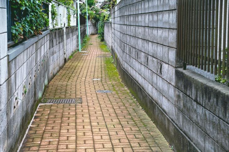 160903中仙川-98.jpg
