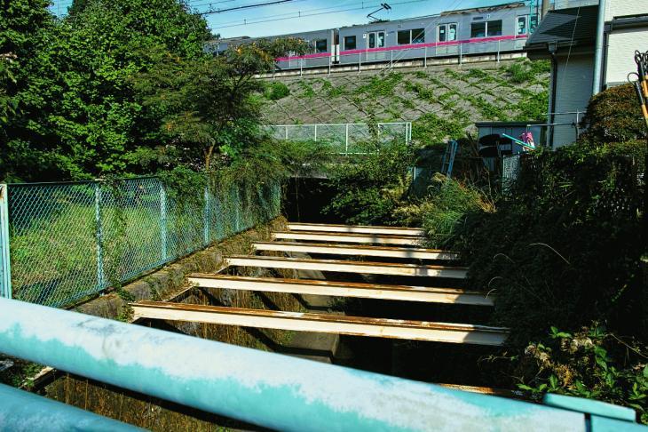 160910入間川-12.jpg