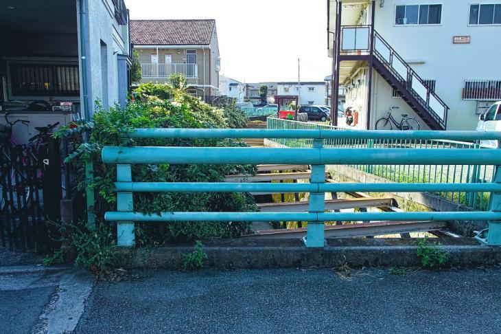 160910入間川-13.jpg