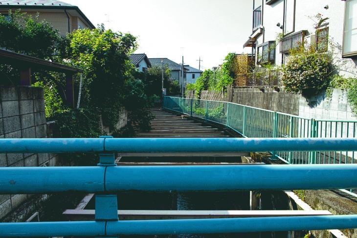 160910入間川-14.jpg