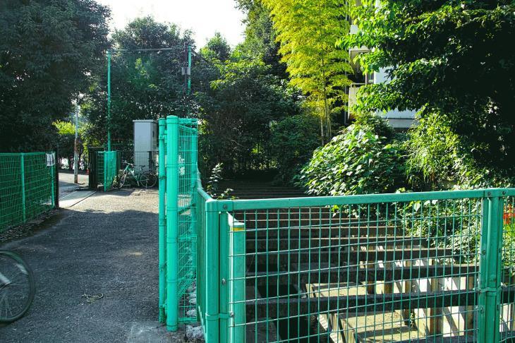 160910入間川-20.jpg