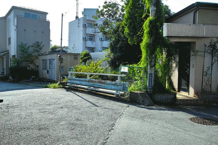 160910入間川-24.jpg