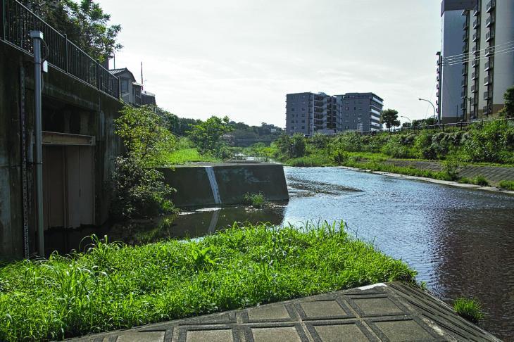 160910入間川-34.jpg