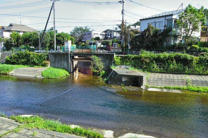 160910入間川-36.jpg