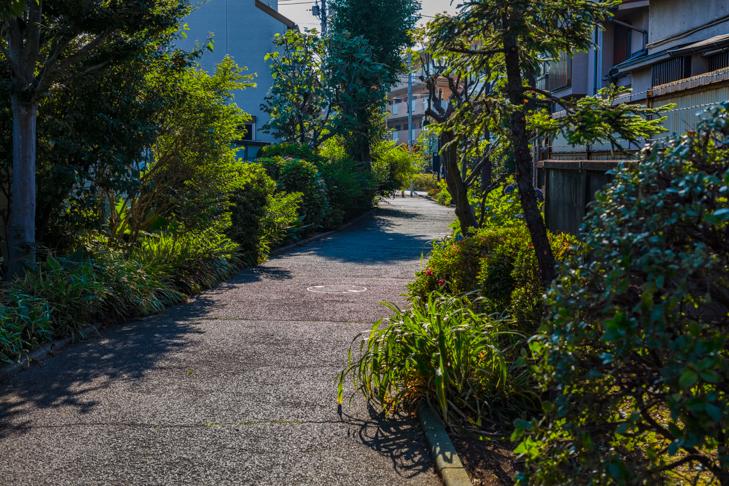 北沢川緑道-18.jpg