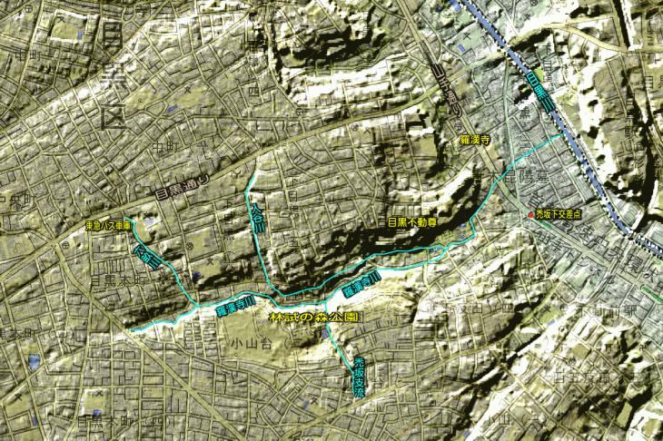 羅漢寺川地形図.jpg
