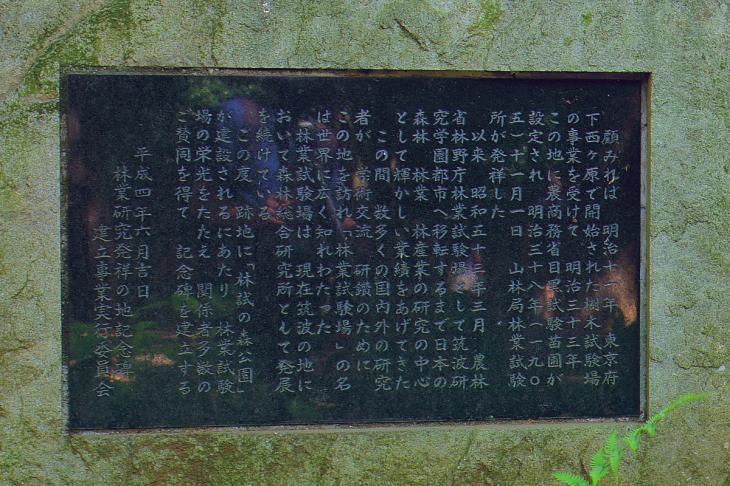 YOKL6353-2.jpg