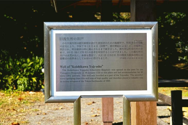 koishikawa-9.jpg