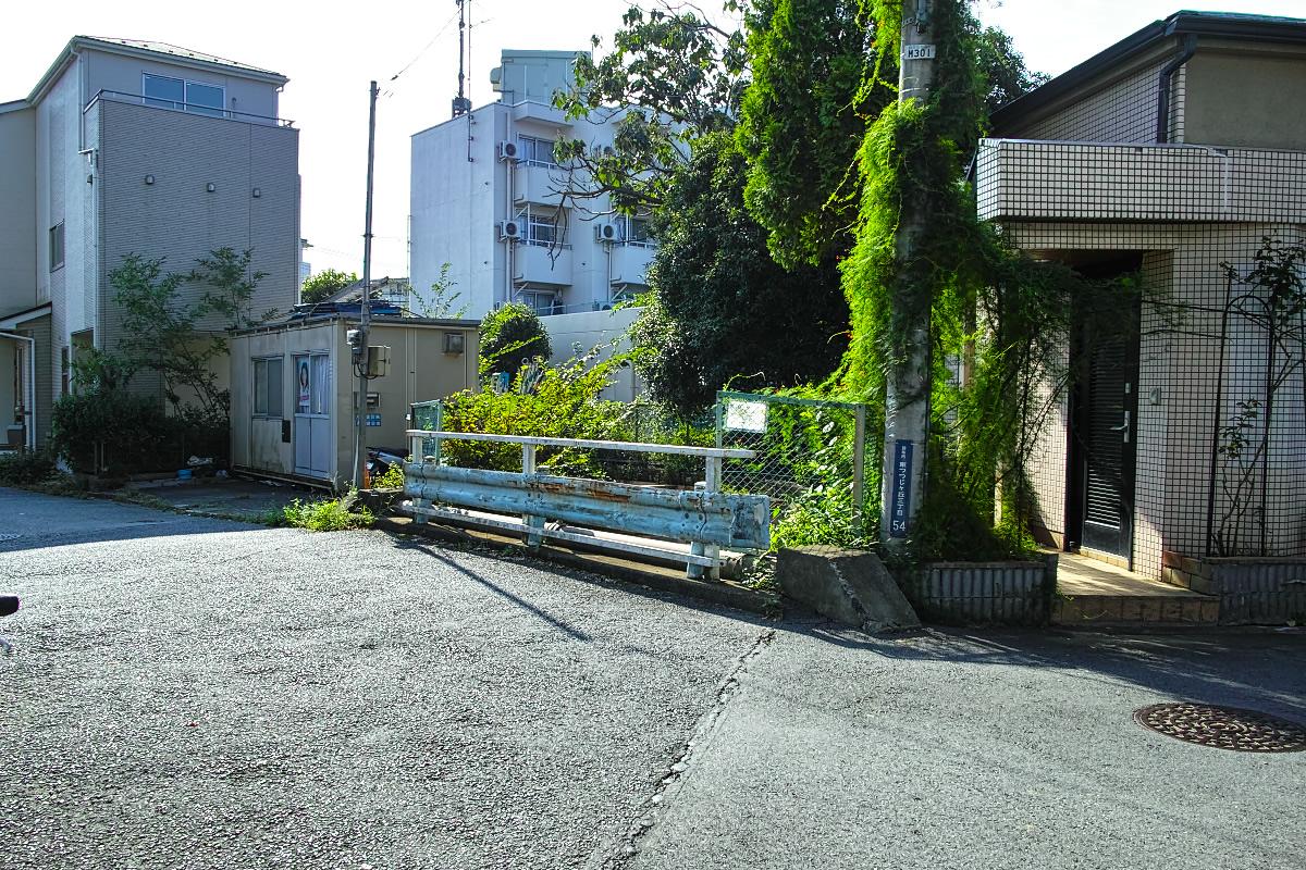 http://y-ok.com/musashino/kokubunji-gaisen/image/160910%E5%85%A5%E9%96%93%E5%B7%9D-24.jpg