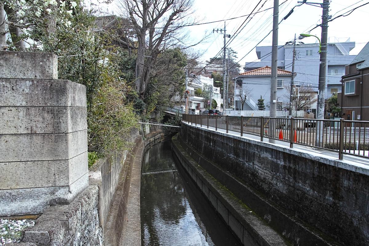 http://y-ok.com/musashino/rokugoyosui/image/160320marukogawa-69.jpg
