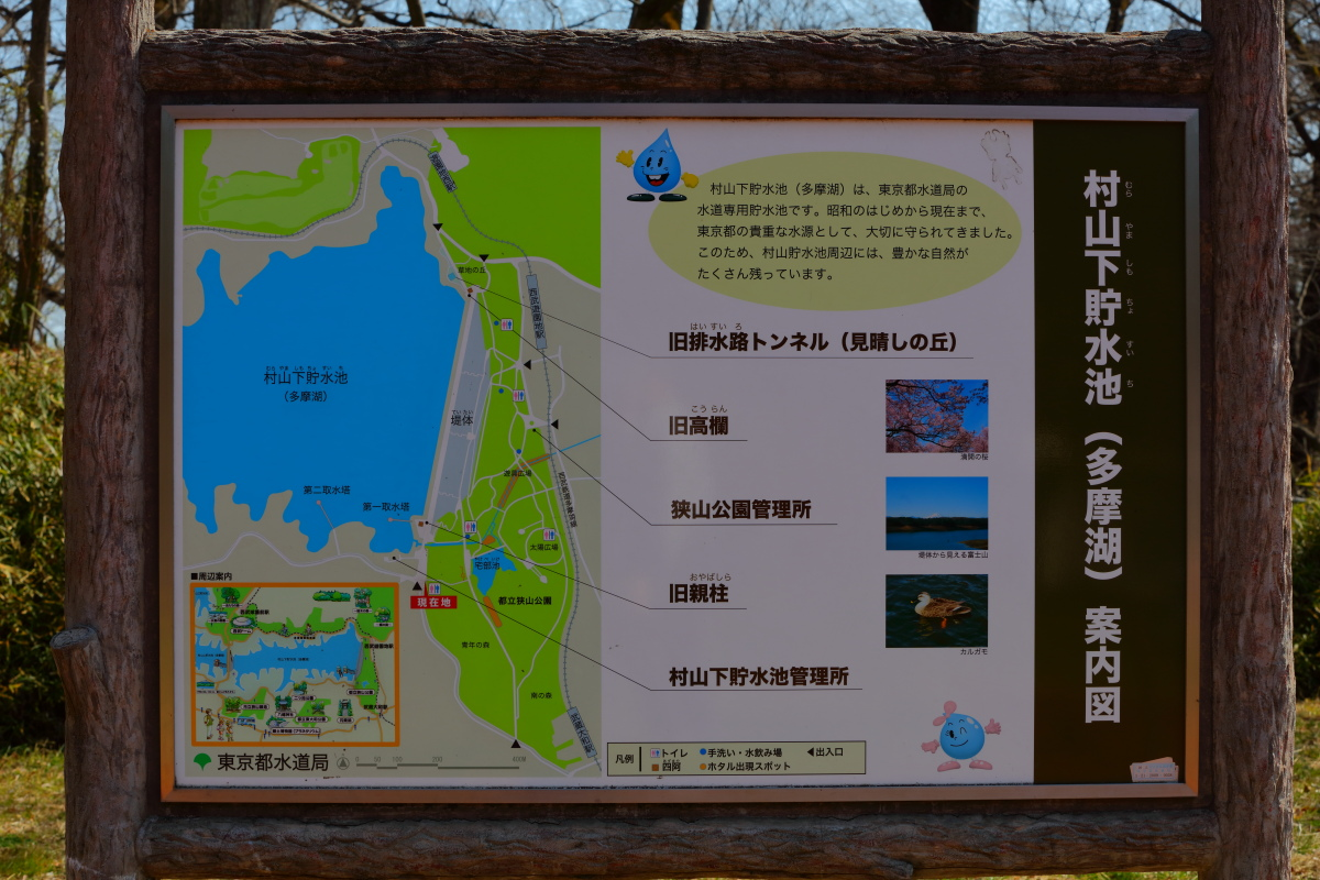 http://y-ok.com/musashino/sayamahills/image/YOKL4122.JPG