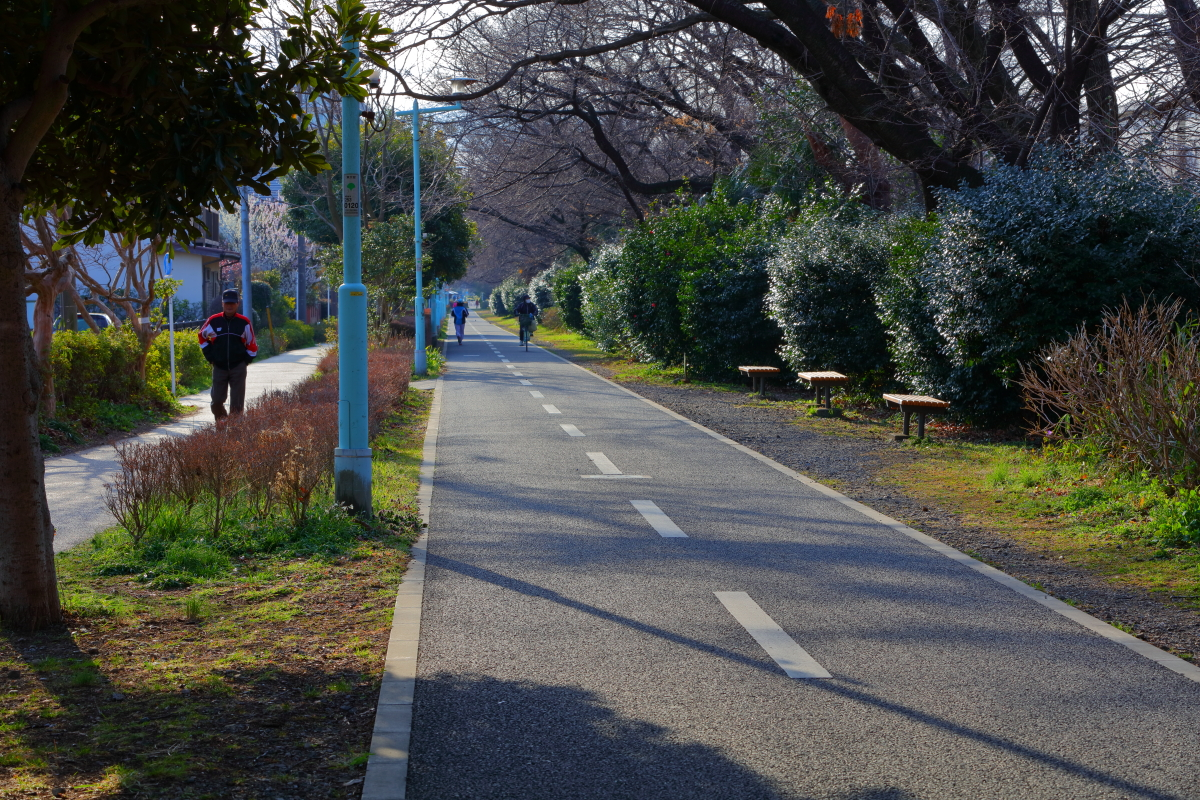 http://y-ok.com/musashino/sayamahills/image/YOKL4165.JPG