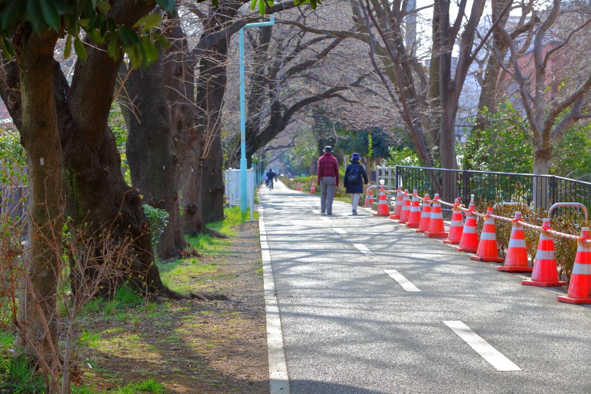 http://y-ok.com/musashino/sayamahills/image/YOKL4204.JPG