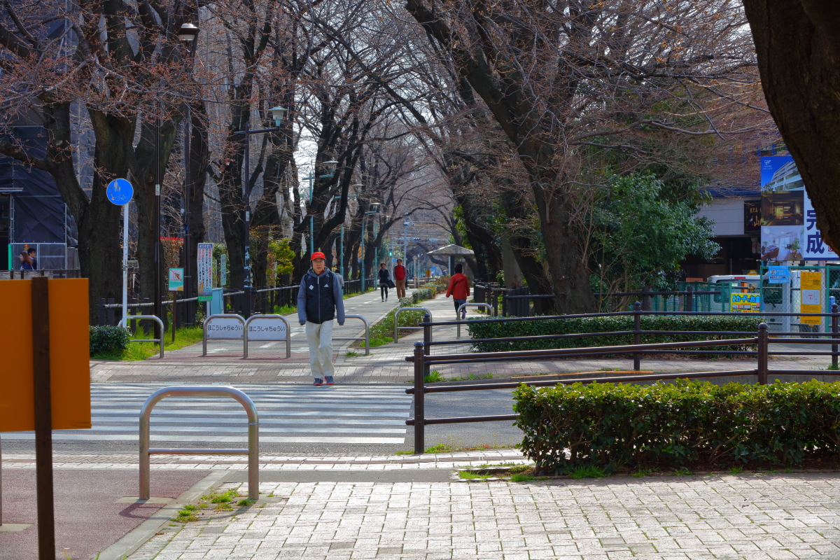 http://y-ok.com/musashino/sayamahills/image/YOKL4209.JPG