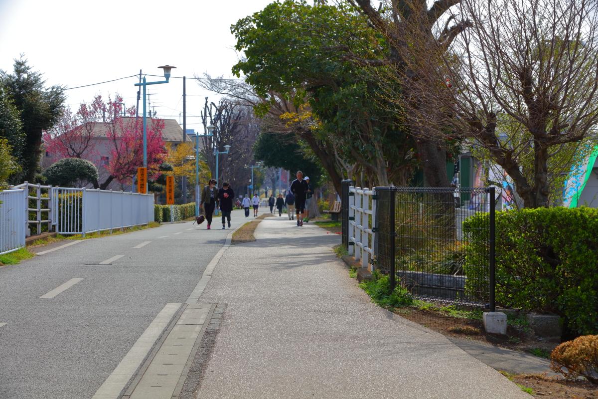 http://y-ok.com/musashino/sayamahills/image/YOKL4212.JPG