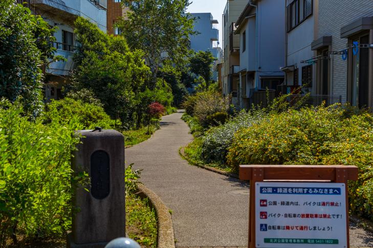 北沢川緑道-100.jpg