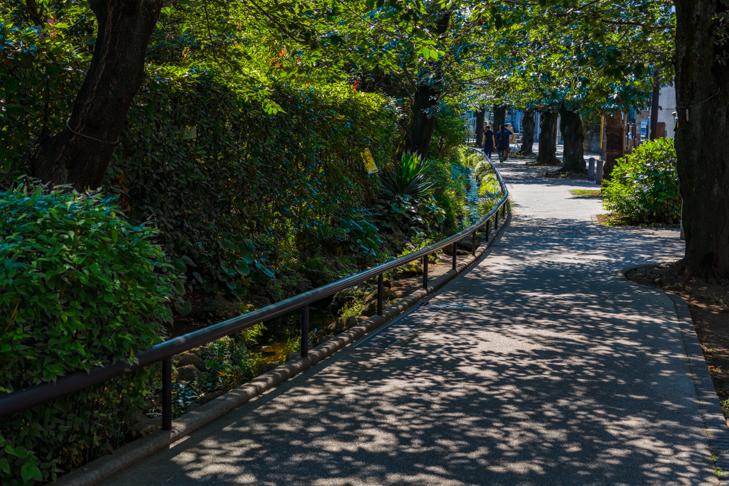 北沢川緑道-116.jpg