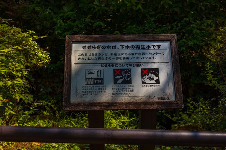北沢川緑道-117.jpg