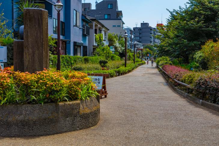 北沢川緑道-154.jpg