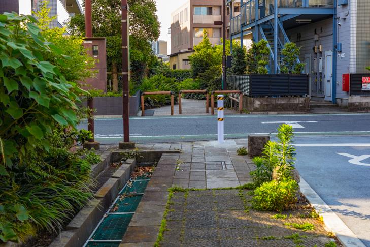 北沢川緑道-28.jpg