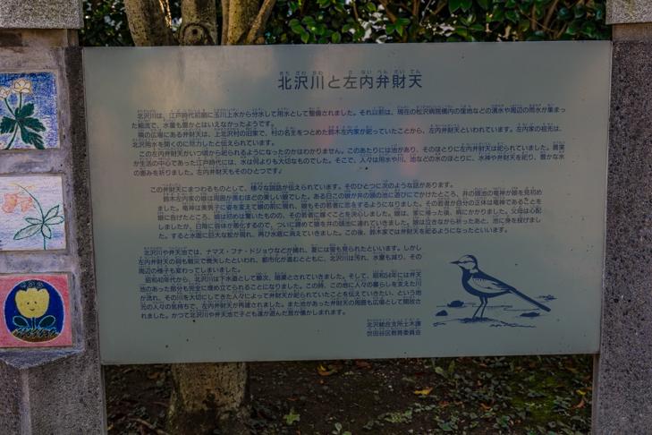 北沢川緑道-52.jpg