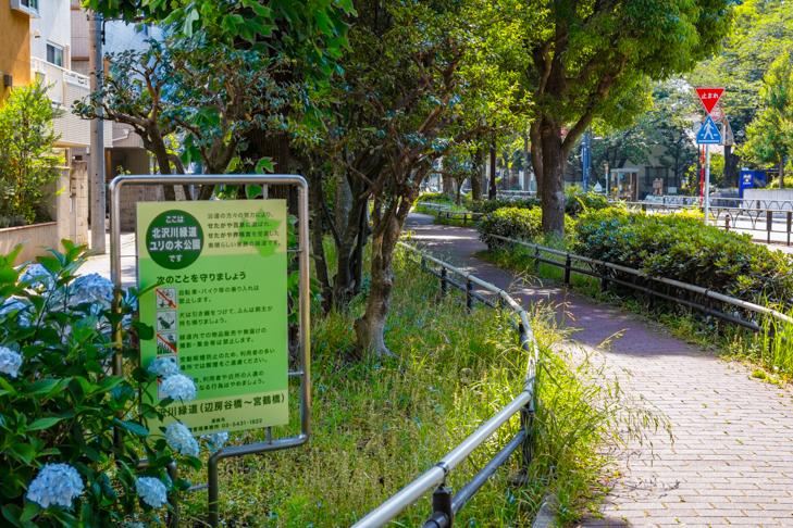 北沢川緑道-73.jpg