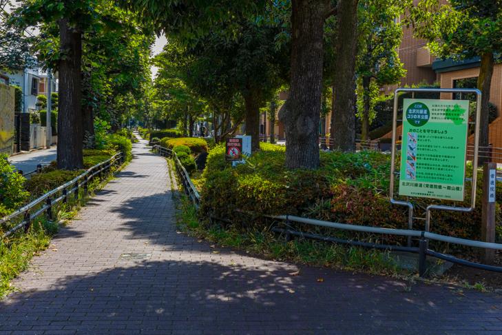 北沢川緑道-79.jpg