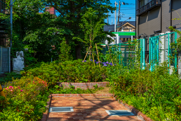北沢川緑道-84.jpg