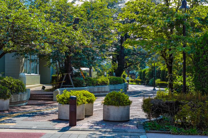 北沢川緑道-90.jpg