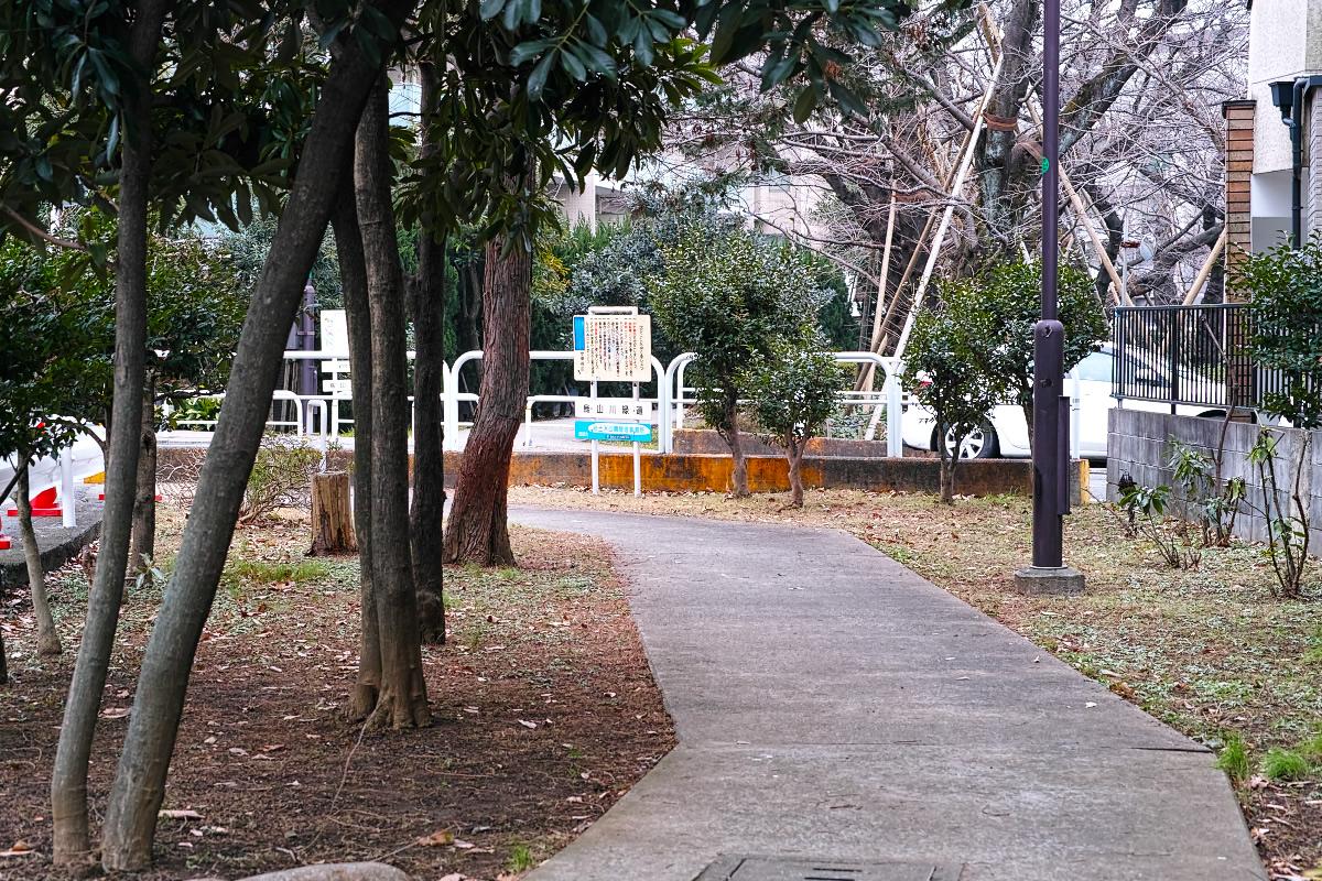 http://y-ok.com/musashino/yamanote_daiti/image/160206karasuyamagawa-57.jpg