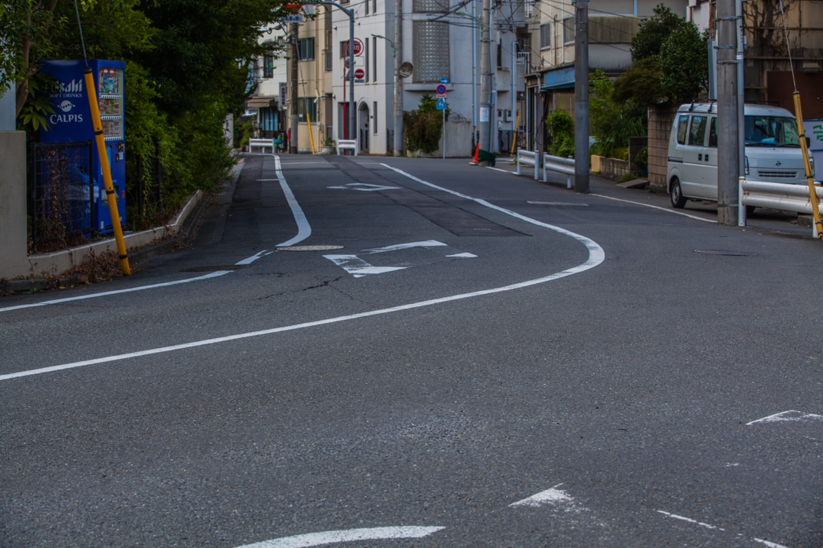 http://y-ok.com/musashino/yamanote_daiti/image/160807senzokunagare-65.jpg