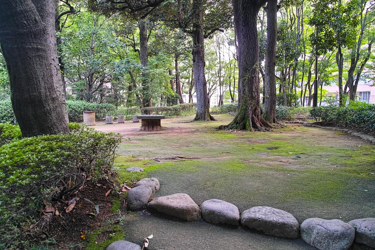 http://y-ok.com/musashino/yamanote_daiti/image/powerhill-122.jpg