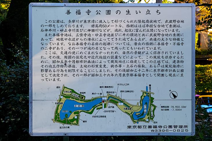 zenpukujigawa-11.jpg