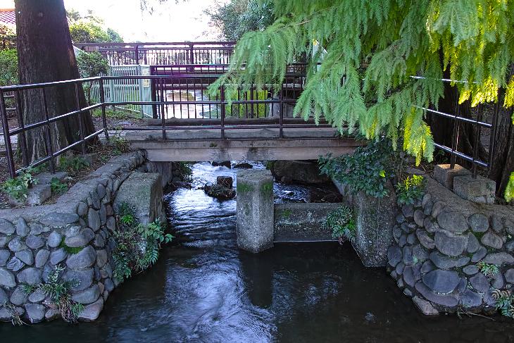 zenpukujigawa-16.jpg