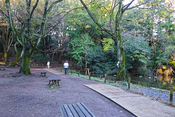 zenpukujigawa-3.jpg