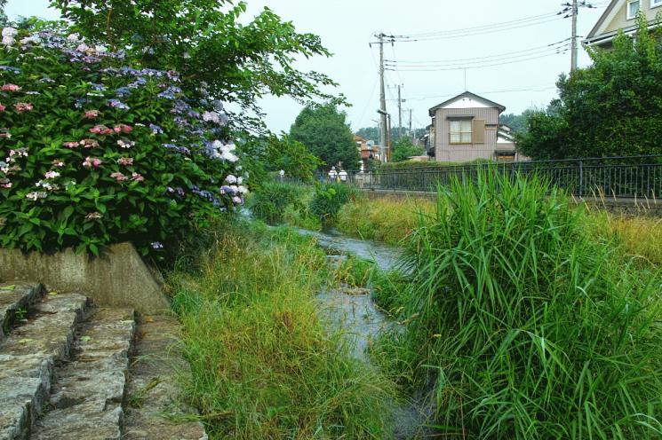 otiaigawa-10.jpg
