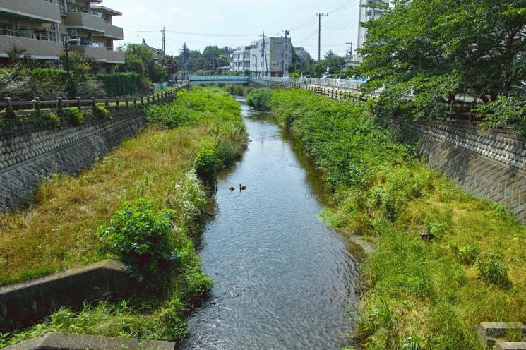 otiaigawa-24.jpg