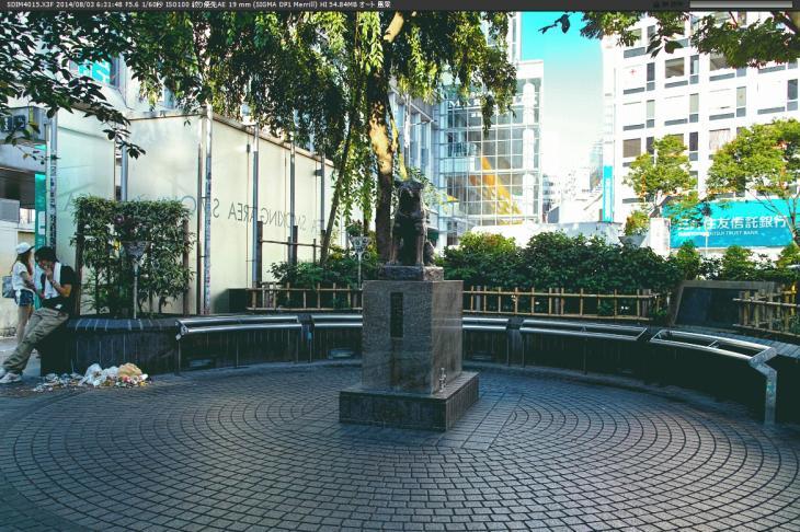 shibuya61.jpg