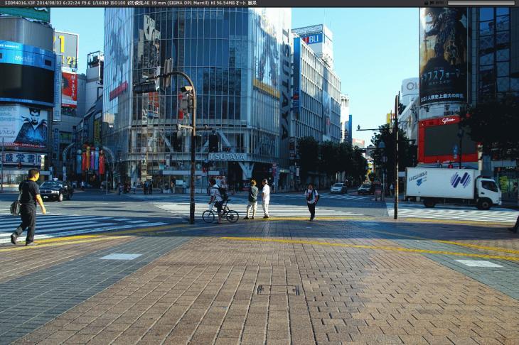 shibuya61.3.jpg