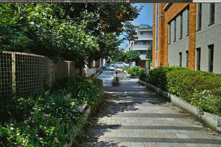 jakuzuregawa-10.jpg