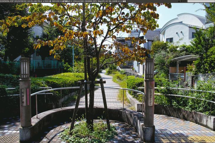 jakuzuregawa-12.jpg