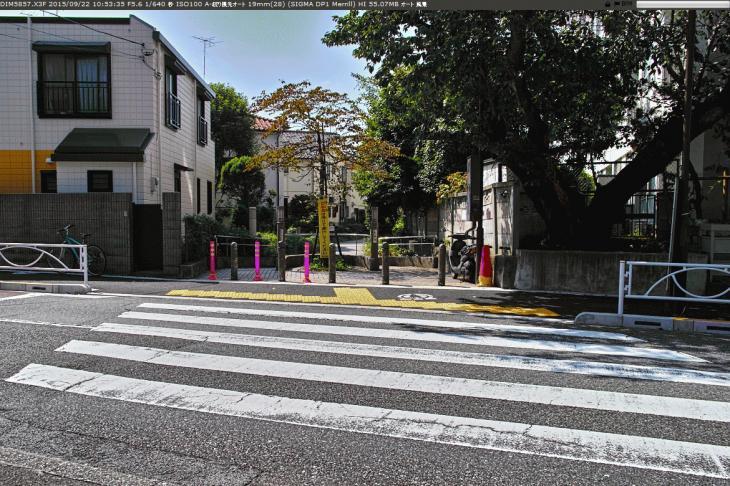 jakuzuregawa-13.jpg
