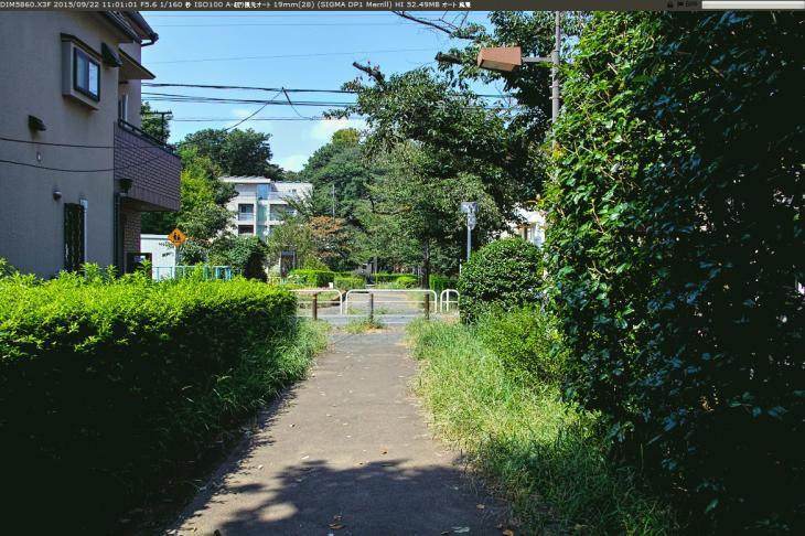 jakuzuregawa-16.jpg