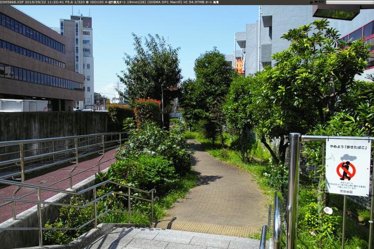 jakuzuregawa-24.jpg