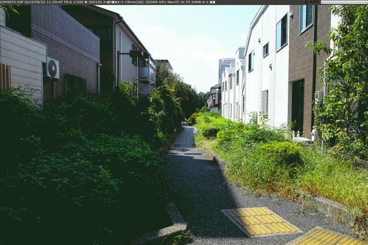 jakuzuregawa-26.jpg